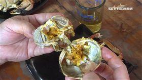 大閘蟹,泰國蝦,秋季,打牙祭,蟹膏,螃蟹