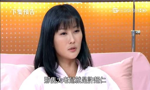一家人,陳珮騏,柯素雲,丁力祺(圖/翻攝自三立台灣台)
