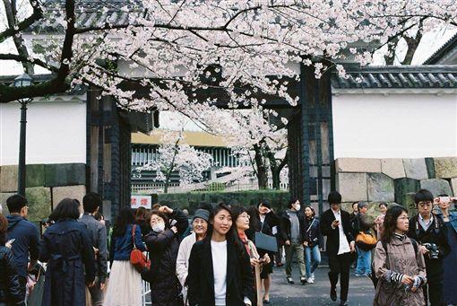 日本,台灣,文化,差異,禮貌,定居 網友rinnn_028提供