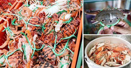 帶外國朋友開眼界!看沙洲吃活蟹,人氣漁港四玩法!