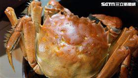 秋季必嚐爆漿蟹膏!台灣大閘蟹完勝陸蟹