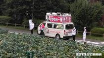 日本國會大選 議員東京「菜園」開講搶票(圖/記者潘彥瑞攝)