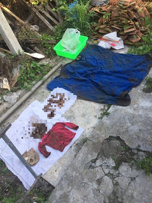 警方挖掘出女童骨骸。(圖/翻攝畫面)