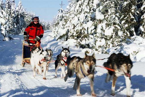 北歐冰屋村賞極光 破冰船越野滑雪樂無窮世邦旅遊提供