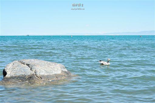 青海湖 圖/文供稿:爆肝護士的玩樂記事