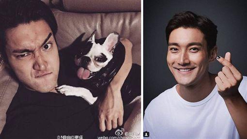 韓團「Super Junior」成員崔始源有養一支法國鬥牛犬Bugsy,不時會在IG上秀出與愛犬的親密照,感情相當要好。日前因沒繫狗繩讓溜出去,不慎咬死鄰居(圖/翻攝自微博)