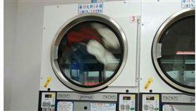 自助,洗衣機,烘衣機,投錢,時間,小偷 圖/翻攝自臉書爆料公社