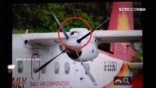 白鷺鷥撞進飛機引擎 乘客驚緊急下機