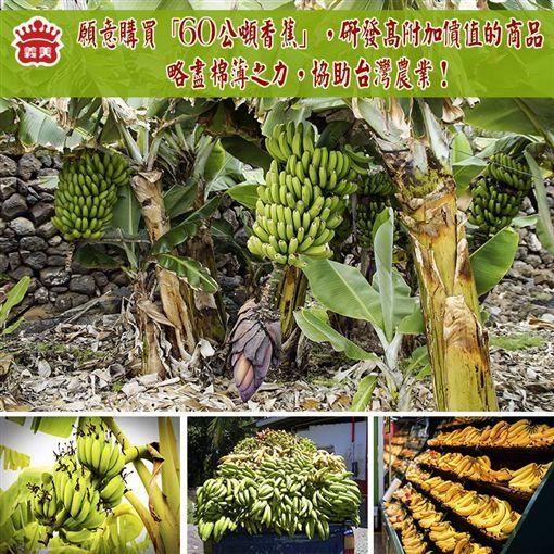 義美將買下60公噸香蕉研發新產品,網友供梗創意無限。(圖/翻攝義美食品臉書)