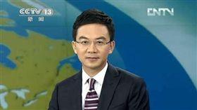 前央視主播、大陸名嘴郎永淳酒駕被逮。(翻攝自新浪娛樂)