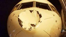 飛機,鳥,撞擊,意外(推特)