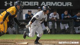 ▲Lamigo外野手藍寅倫2場比賽已經擊出4支二壘打。(圖/記者林敬旻攝)