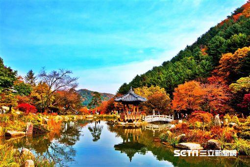 韓國京畿道,晨靜樹木園。(圖/韓國觀光公社提供)