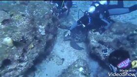 潛水客騷擾海龜、抓海蛇竟還錄影上傳 網友氣炸怒控虐待 圖/翻攝自靠北潛水