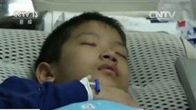 10歲男童患腦瘤 死前哀求捐大體「爸爸你得簽字啊!」 圖翻攝自中新網 http://www.chinanews.com/sh/2017/10-31/8364265.shtml