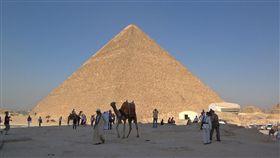 埃及古夫金字塔 ▲圖/wiki/Berthold Werner