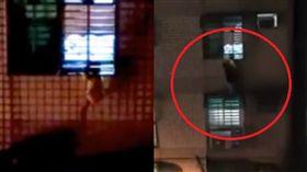 英勇,爬窗,小女孩,吊掛,鐵窗,救援,父母(圖/翻攝自爆料公社)