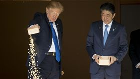 ▲今(6)日是美國總統川普的亞洲行第2天,安倍邀川普至迎賓館餵鯉魚,但川普餵魚方式相當霸氣,直接將一整碗飼料全部倒入水池,讓網友看後直呼,「沒有最狂,只有更狂!」。(圖/美聯社/達志影像)