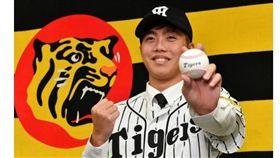 呂彥青加盟日本職棒阪神虎。(圖/翻攝自Daily)