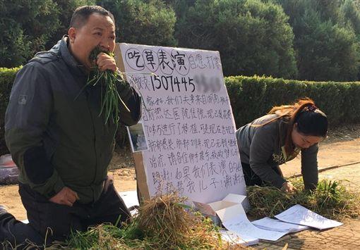 河北夫妻街頭吃草/網易