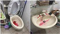 廁所,惡作劇,惡搞/爆廢公社