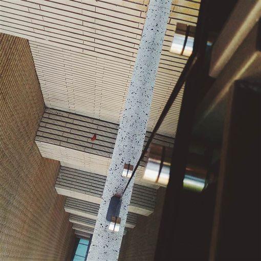 擲筊,聖筊,一層樓,遙遠,荒謬,Dcard 圖/翻攝自Dcard