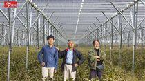名家/今周刊/從核災區變綠能大國!看日本如何向天要電