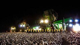 照片,棉花田,派對,演唱會,錯覺 圖/翻攝自推特