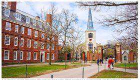 哈佛大學,性愛周