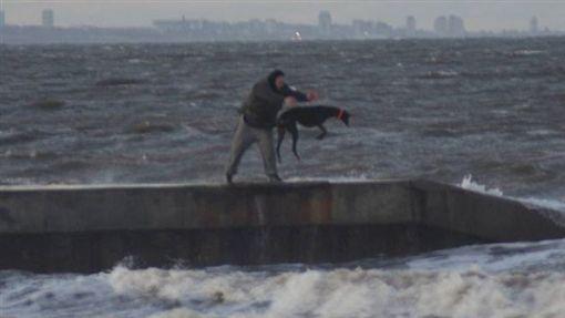 英國,虐狗,丟狗,海邊,虐待動物 圖/翻攝自RSCPA