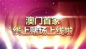 葡京娛樂城,廣告,運動,賽事,賭博,A片,情色片,賭客,博弈,AV 圖翻攝自/YouTube