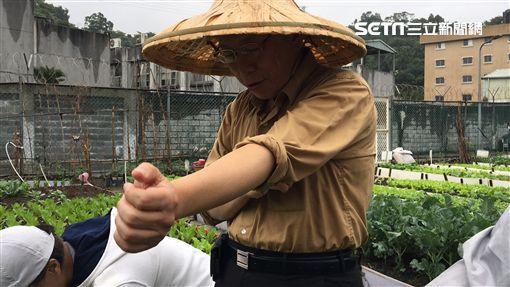 柯文哲走讀南港田園城市化身農夫 盧冠妃攝
