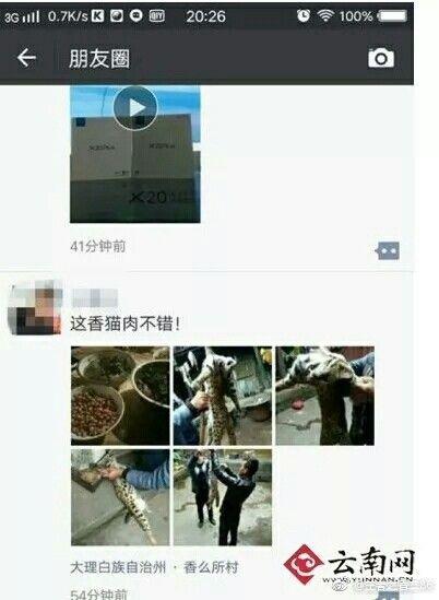 大陸雲南大理州祥雲縣米甸鎮,有一名安姓男子在野外發現一隻受傷的豹貓,不料他竟約好友一起烹煮豹貓,吃完後還大讚「這香貓的肉不錯」。目前警方以涉嫌殺害豹貓的罪嫌將安男逮捕。(圖/翻攝自微博)