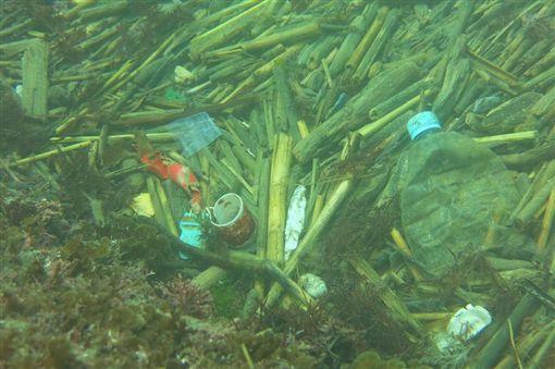 有潛水志工網友淨海時,發現基隆和平島有一處「寶特瓶海」,垃圾面積約有2個籃球場大,讓人看得怵目驚心。(圖/翻攝自臉書動手愛台灣)