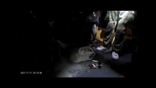 警方發現林男下體異常激凸。(圖/翻攝畫面)