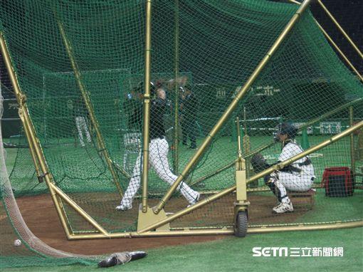 ▲台灣犬中華隊在亞冠賽只使用1個打擊籠。(圖/記者蕭保祥攝)