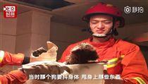 ▲紅貴賓全身沾滿屎尿,消防員不禁皺眉。(圖/翻攝自時間視頻微博)