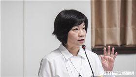國發會主委陳美伶,經濟委員會 圖/記者林敬旻攝