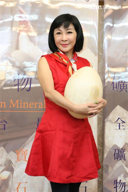 2017年11月20日 吳淡如出席礦物展