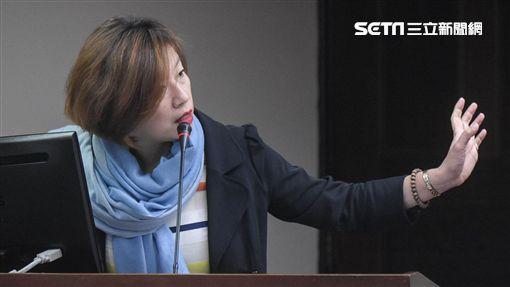 民進黨立委林靜儀。 圖/記者林敬旻攝
