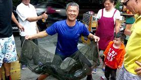 有釣客在大甲溪抓魚時,意外抓到一條重約38台斤的大尾鱸鰻,就連行腳節目主持人沈文程巧遇看到都直呼,「阿娘喂!」最後釣客則聽老婆建議,決定將這條鱸鰻放生,讓牠重回大自然。(圖/翻攝自沈文程臉書)