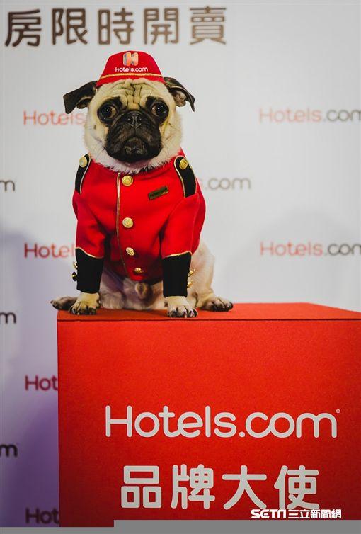 Hotels.com全新品牌大使發表會,雀客旅館主題房。(圖/hotels.com提供)
