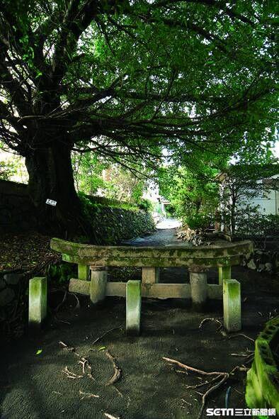 鹿兒島,活火山,櫻島。(圖/鹿兒島縣觀光聯盟提供)