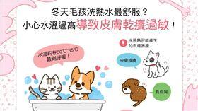 名家/毛起來/天冷洗熱水最舒服?小心高溫讓狗狗貓貓乾癢過敏