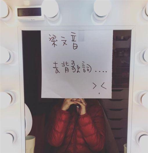 梁文音 圖/翻攝自梁文音臉書