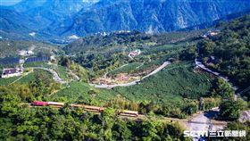新年度開始,阿里山森林鐵路管理處將推出「慢遊森鐵」郵輪式列車。(圖/阿里山森林鐵路管理處提供)