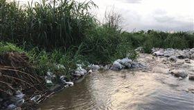 台中大甲溪遭棄置大量塑膠太空包/爆料公社
