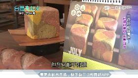 偉哲餵鱷魚1200(編)