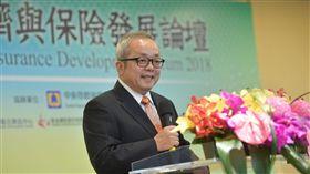 行政院副院長施俊吉出席「2018年經濟與保險發展論壇」。(行政院提供)