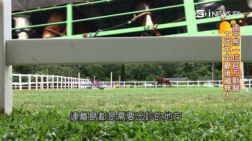 台灣唯一 國際認證馬獸醫憂後繼無人
